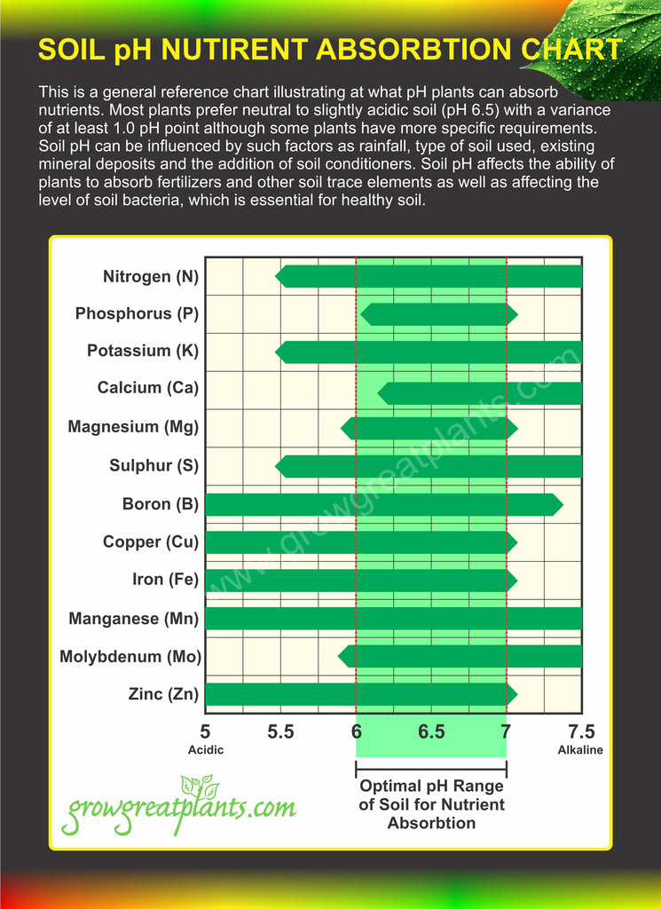 Nutrient Absorption Reference Chart