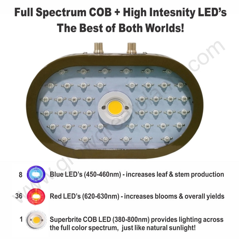 products/1100w_COB_LED_Grow_Light_-_Color_ratio_cb49a06b-4d76-4211-a8da-67ba9695dc31.jpg