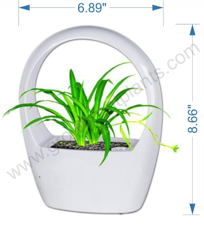 products/LED_Grow_Pot_-_included2.jpg