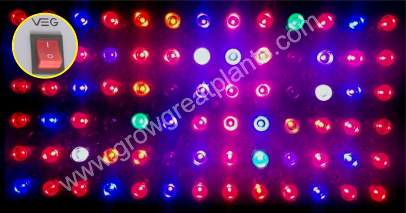 products/Veg_Light_1365c352-5a56-4ab3-ba3b-82eac3829479.jpg