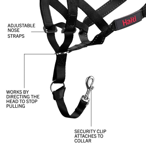 Halti Headcollar and Training Lead Combination Pack