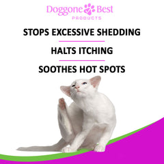 Doggone Best Products Cat Probiotics - Helps with Diarrhea and Constipation - All Natural Powder