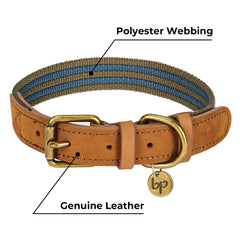 Blueberry Pet Vintage Polyester Webbing & Genuine Leather Combo Dog Collar