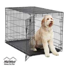 Homes for Pets Dog Crate  iCrate Single Door & Double Door Folding Metal Dog Crates  Fully Equipped