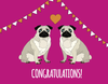 Congratulations Pug Card - Red Parka