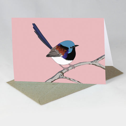 RP - Variegated Fairy Wren (A-Z of Australian Animals) Card