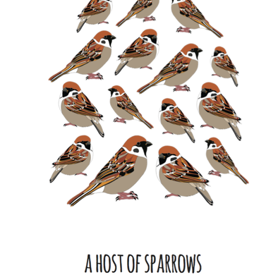 A Host of Sparrows Art Print