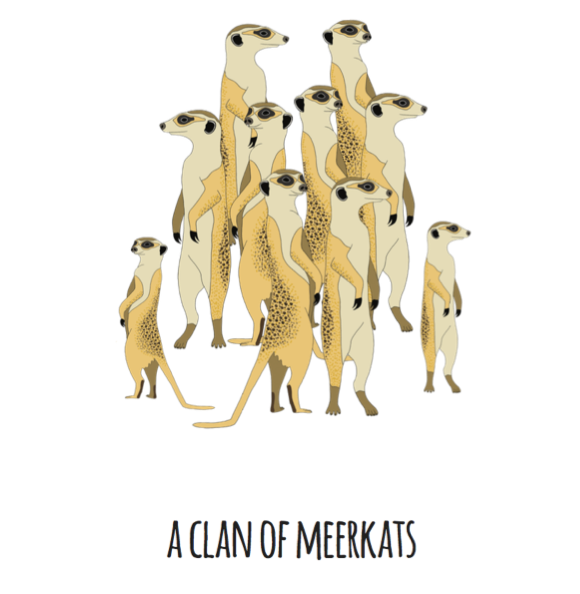 A Clan of Meerkats Art Print