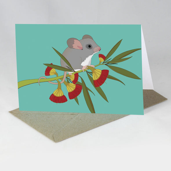 Australian Animal Card - Little Pygmy Possum