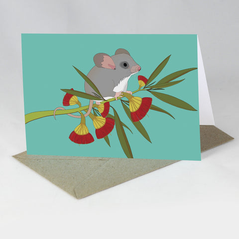RP - Little Pygmy Possum (A-Z of Australian Animals) Card