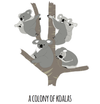 A Colony of Koalas Art Print