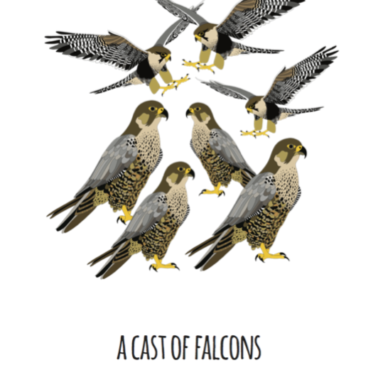 A Cast of Falcons Art Print