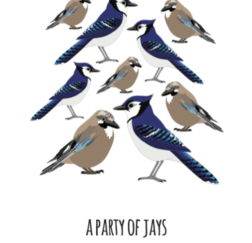 A Party of Jays Art Print