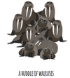 A Huddle of Walruses Art Print