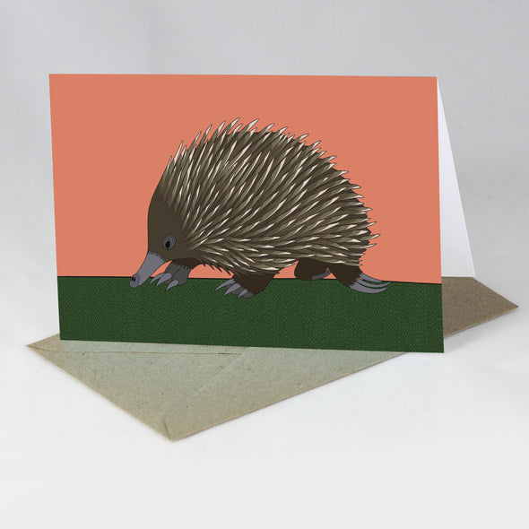 Australian Animal Card - Echidna