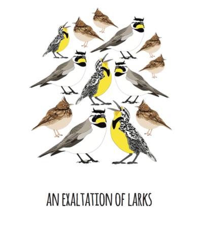 An Exaltation of Larks Art Print