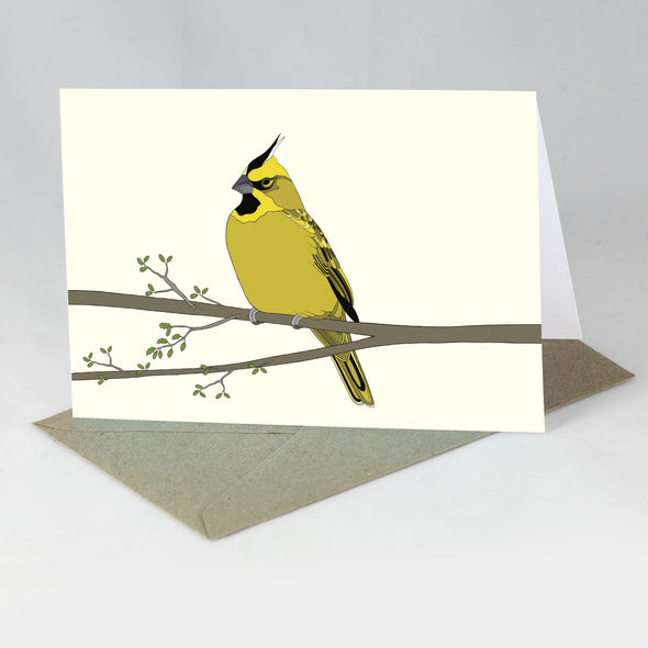 Endangered Animal Card - Yellow Cardinal
