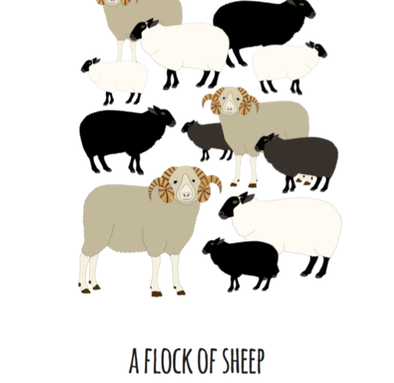 A Flock of Sheep Art Print