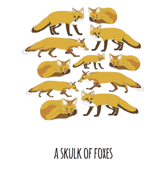A Skulk of Foxes Art Print