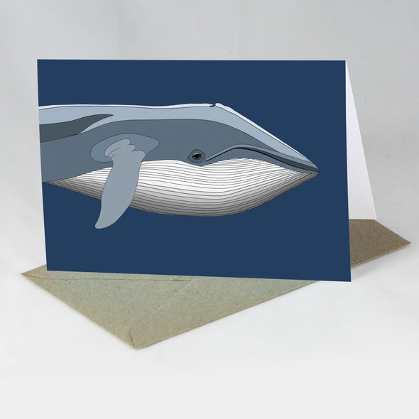 Endangered Animal Card - Blue Whale