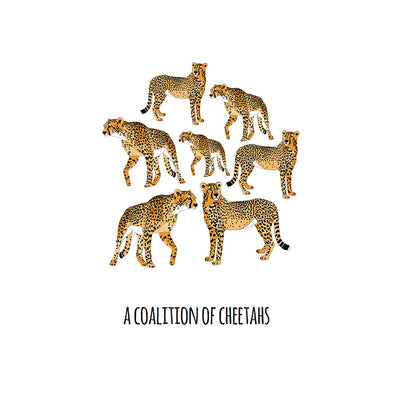 A Coalition of Cheetahs Art Print