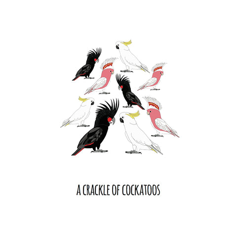 RP - A Crackle of Cockatoos Art Print