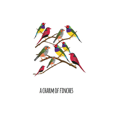 A Charm of Finches Art Print