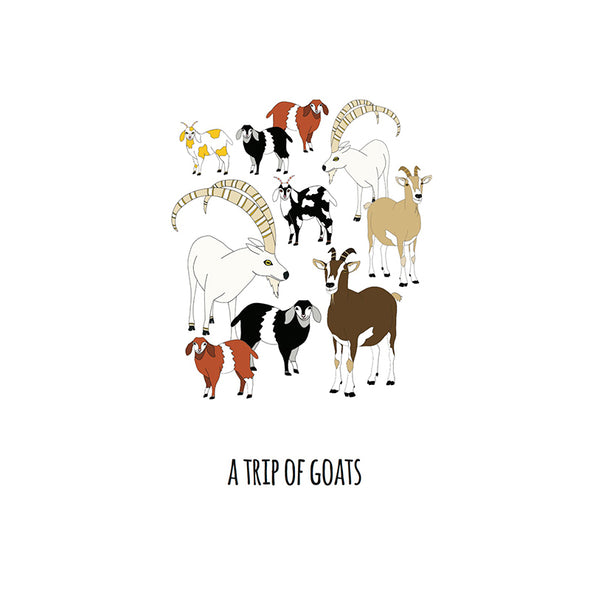A Trip of Goats Art Print