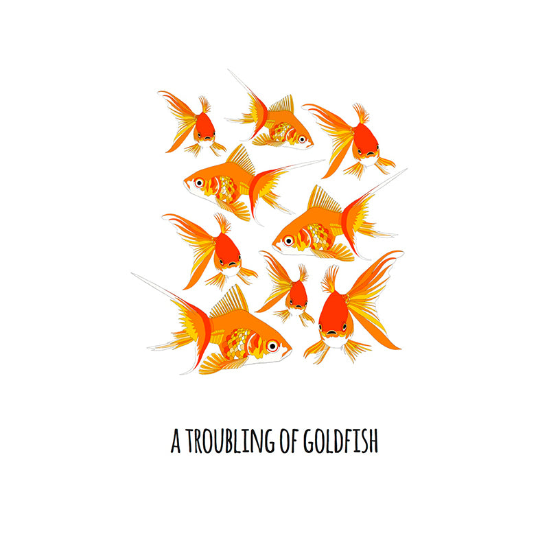 RP - A Troubling of Goldfish Art Print