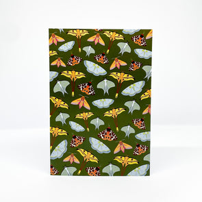 Moths - Red Parka Card