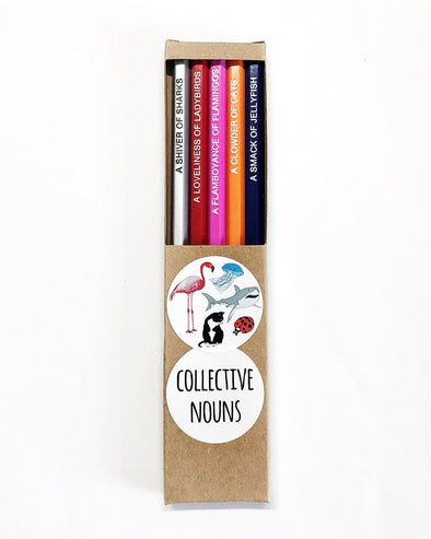 101 Collective Nouns Pencil Pack