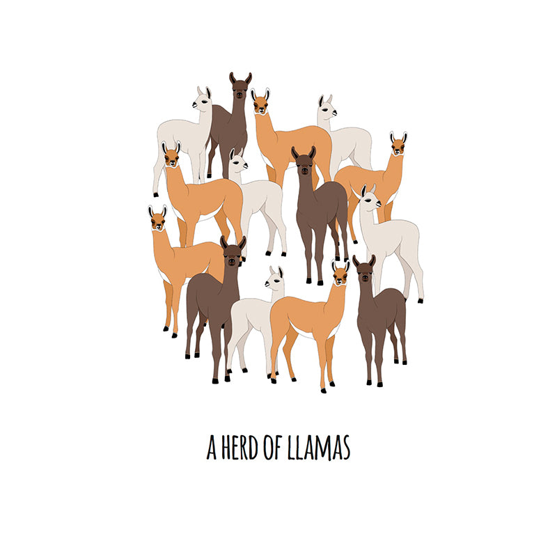RP - A Heard of Llamas Art Print