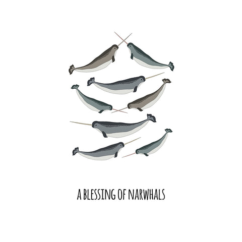 RP - A Blessing of Narwhals Art Print