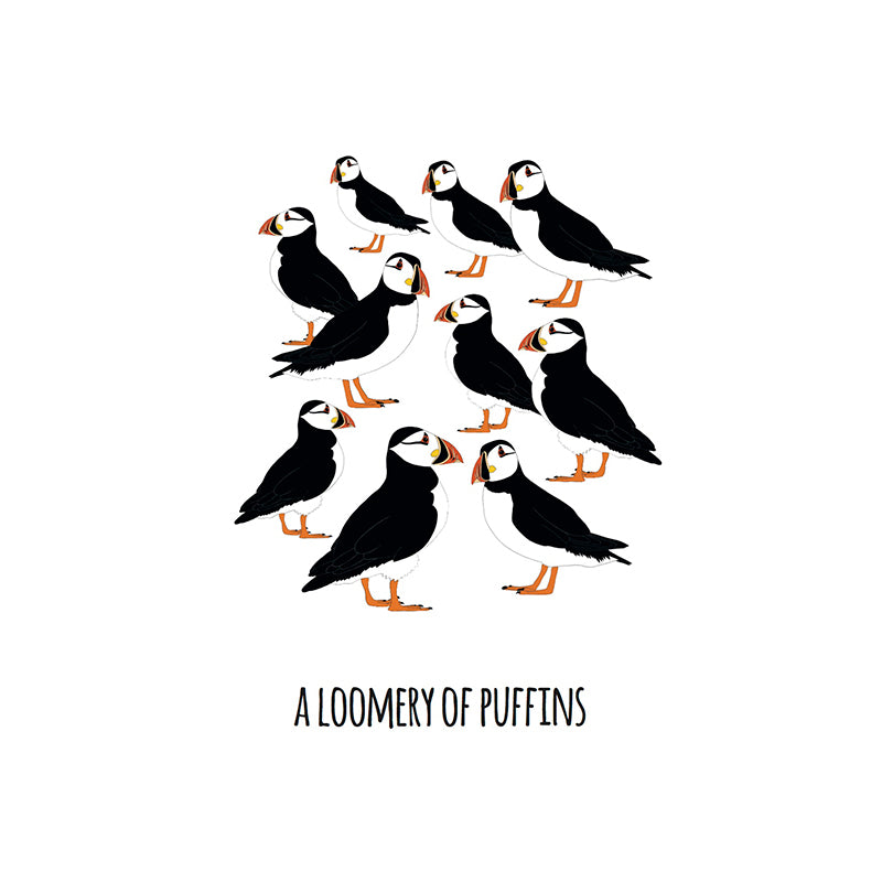 RP - A Loomery of Puffins Art Print