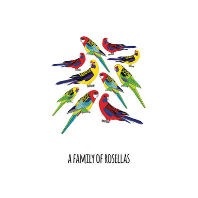 A Family of Rosellas Art Print