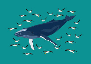 Whale Flight A4 Print by Jennifer Cossins