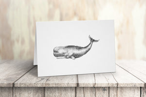 Pen and Ink Whale Note Card