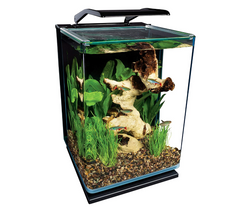 Marineland 5 Gallon aquarium amazon