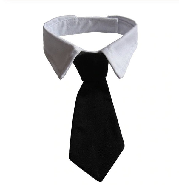 Dog Dress Neck Tie - Wild Pet Supply