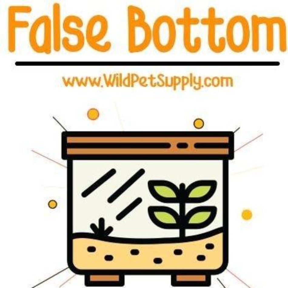 False Bottom for Terrariums - Wild Pet Supply