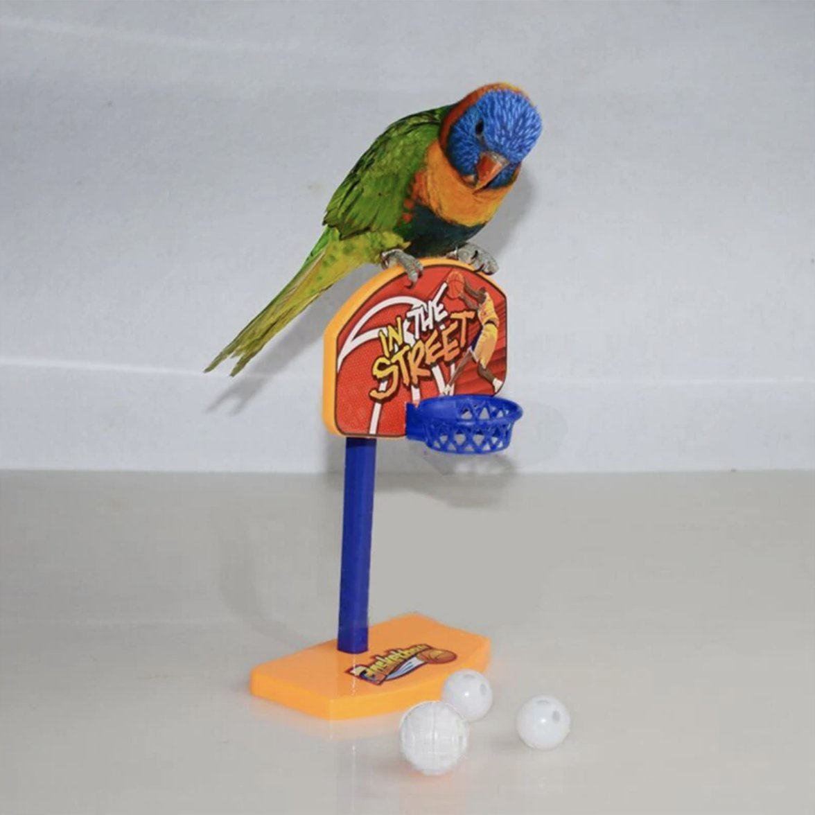 Parrot Training Basket Ball Toy - Wild Pet Supply