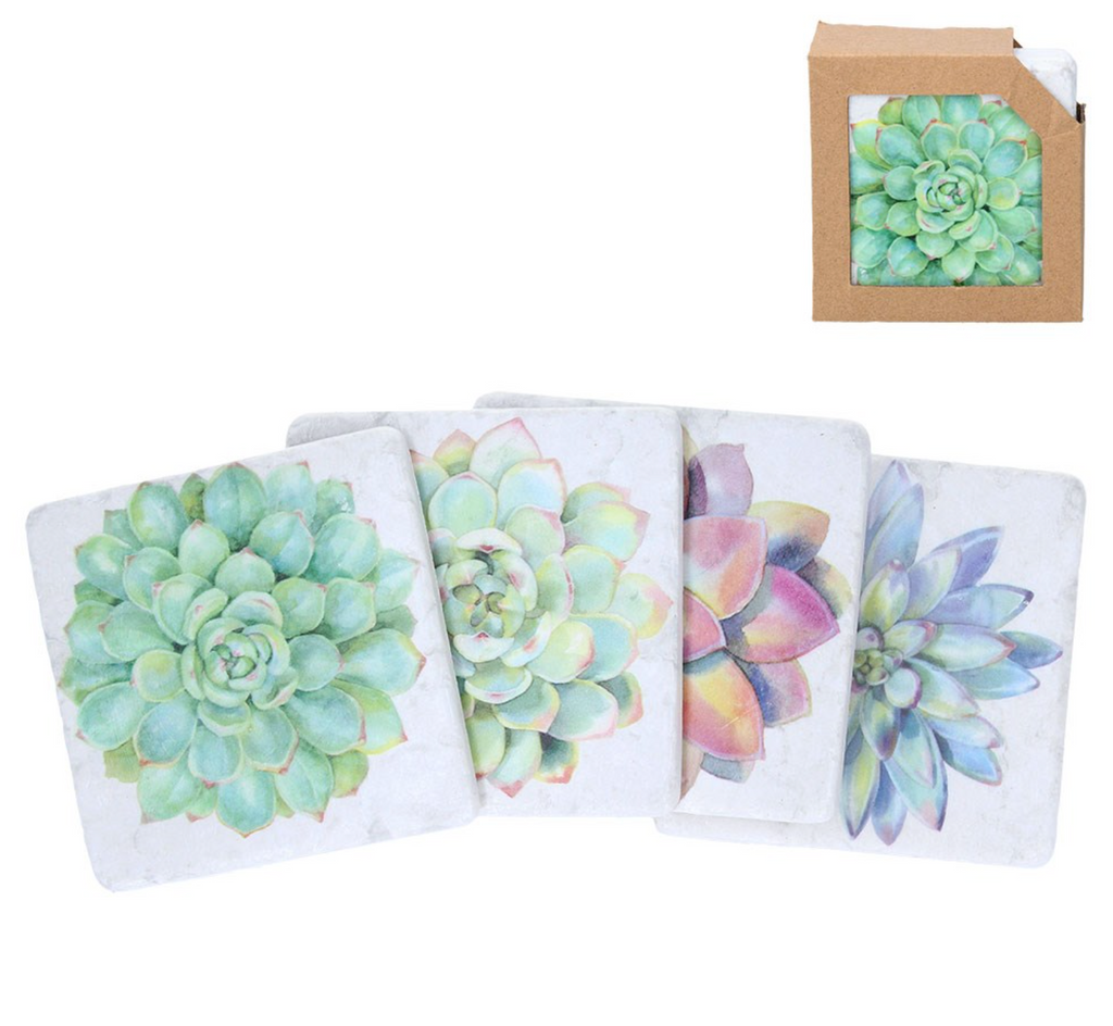Coaster Set Succulents