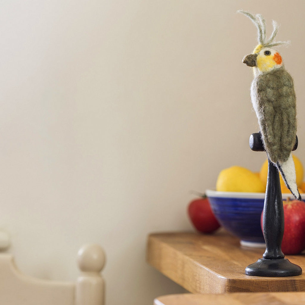 Grey Cockatiel Taxidermy