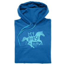 Load image into Gallery viewer, 20506 - My Horse Is Calling Hoodie