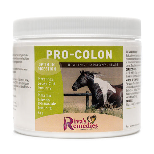 Pro-Colon is specifically formulated for horses, ponies and donkeys to replenish friendly intestinal bacteria and promote healthy hindgut function. Its is a blend of prebiotics and probiotics and aids with gas, bloating and colic. OnTotalWellness distributing for Ontario