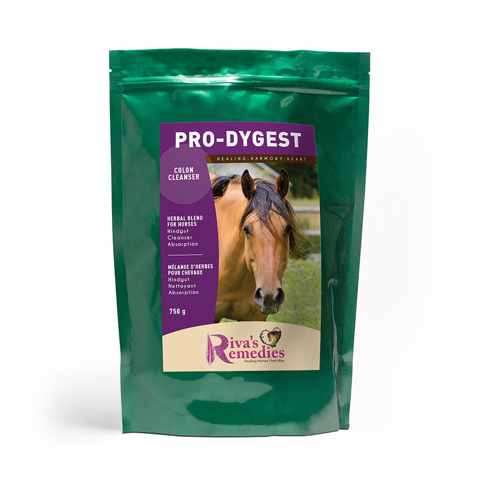 Pro-Dygest is an excellent Herbal Blend for promoting the function and health of the gastrointestinal system including hindgut toxicity. Maintains a healthy intestinal immune system for your horse, pony or donkey. Use for diarrhea/leaky gut. OnTotalWellness distributing for Ontario
