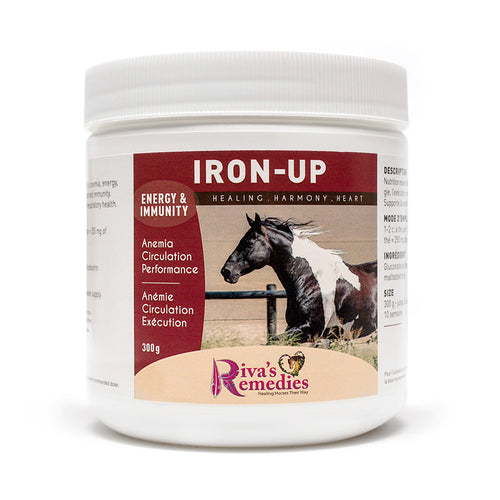 Iron-Up is an essential nutritional supplement for anemia, energy, mental wellness and immunity. Supports blood cell regulation and optimum respiratory health. OnTotalWellness distributing for Ontario