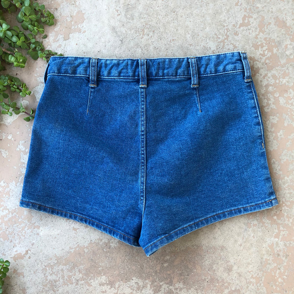 Free People We the Free Jean Shorts | Size 29