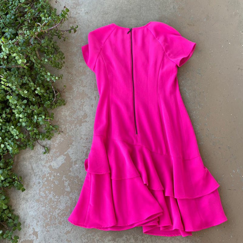 Shani Pink Dress, Size US 2