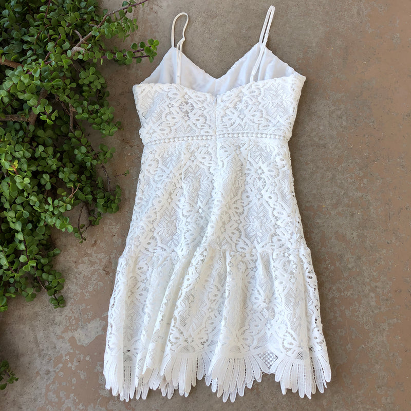 BB Dakota Lace Mini Dress, Size 2